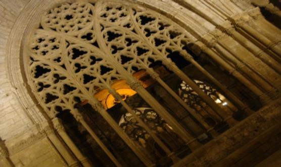 El claustre de la Seu Vella